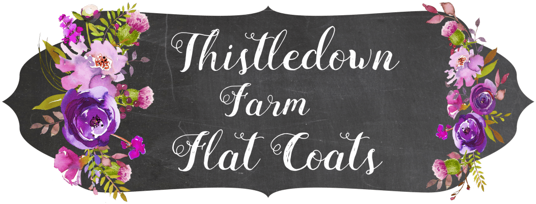 Thistledown Farm Flats
