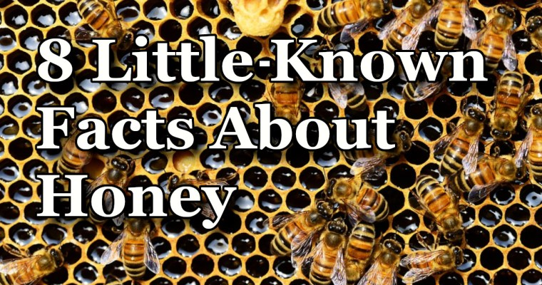 8 Little-Known Facts About Honey