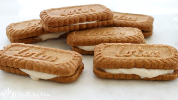 Best Mini Ice Cream Sandwiches