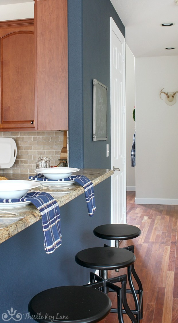 Gale Force by Sherwin-Williams Accent Wall