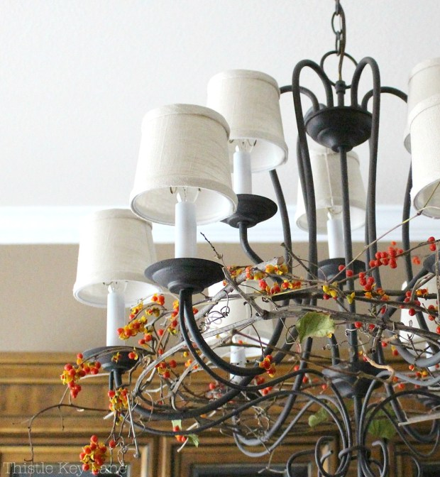 Decorate a chandelier with bittersweet and grapevines.