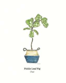 Fiddle leaf fig watercolor by Thistle Key Lane.