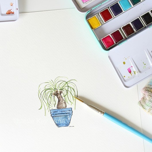 Pony tail plant watercolor. Houseplant watercolors by Thistle Key Lane.