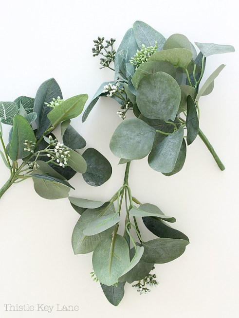 Eucalyptus short stem bundles.
