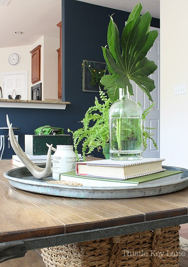 Coffee table metal tray with books, plants and vintage accessories.