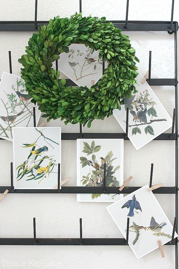 Audubon bird post cards and a boxwood wreath on a cup rack.
