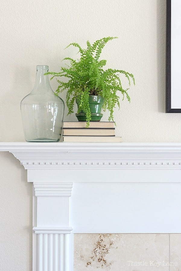 Green potted fern on a stack of books and a glass bottle.