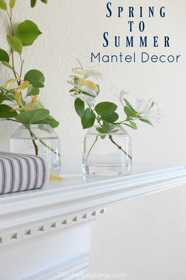 Styling a mantel with honeysuckle clipping in glass vases.
