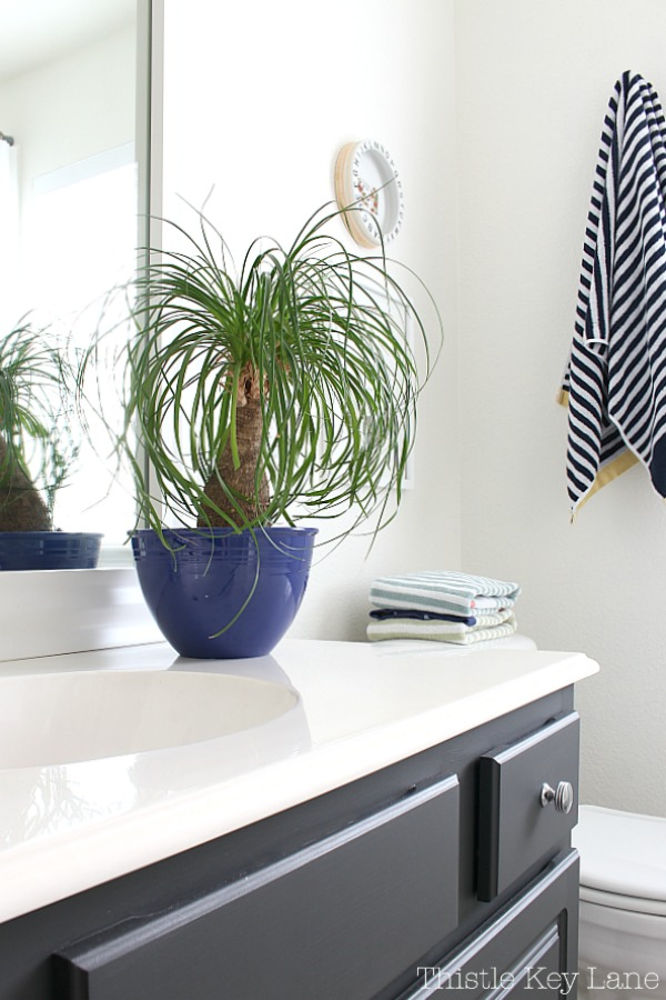 Ideas for decorating with plants in the bathroom.
