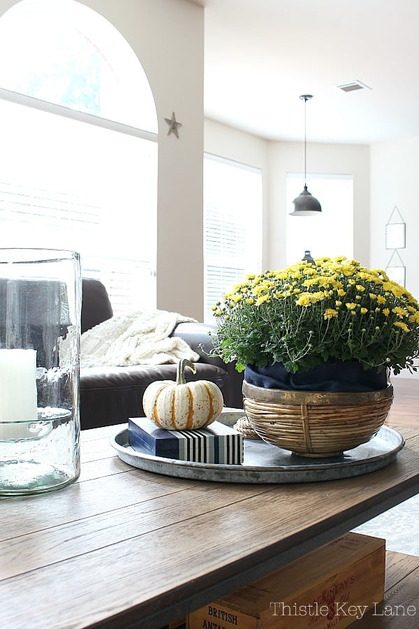 Fall Decorating With Mums And Pumpkins on a metal coffee table tray.