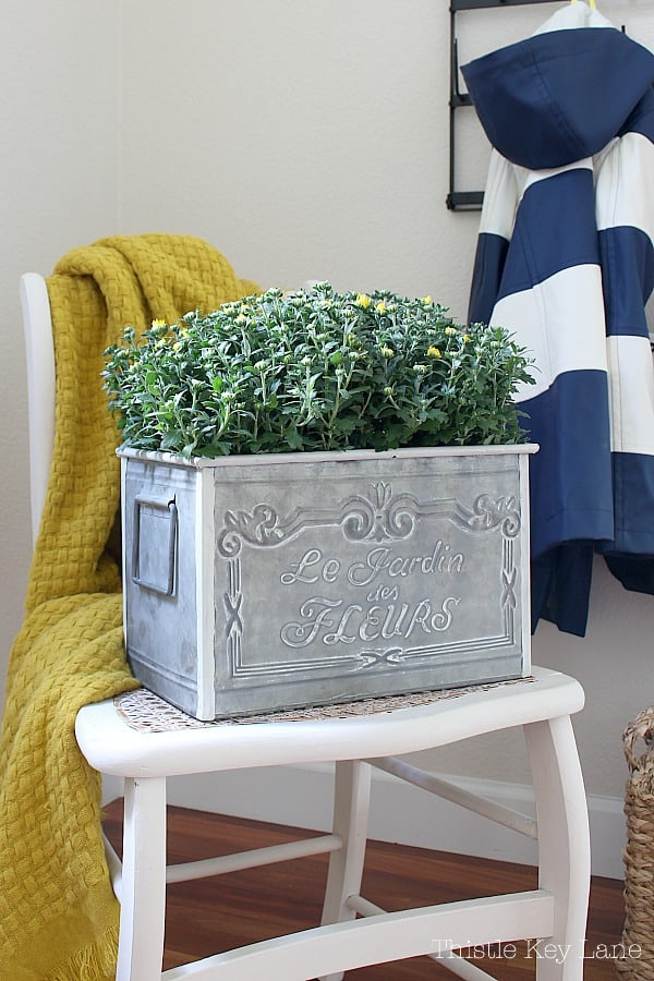 French inspired planter with mums sitting on a chair.