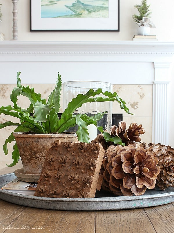 Winter Decorating Family Room Tour - Coffee table vignette with pinecones, a green plant and a wooden stamp.