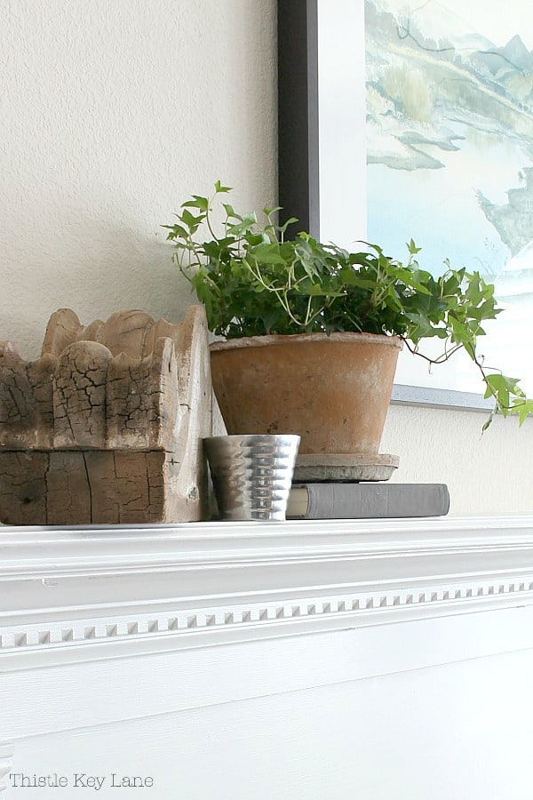 Rustic vignette with a corbel and ivy plant.
