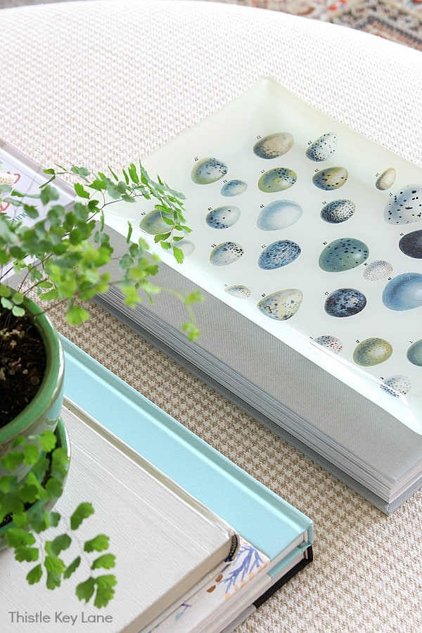 Spring Decorating Ideas For An Ottoman - tray with painted bird eggs.