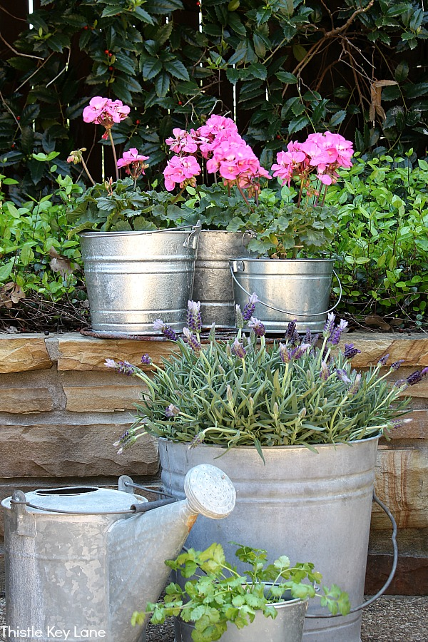 Simple Bucket Container Garden Sitting On Rock Wall.