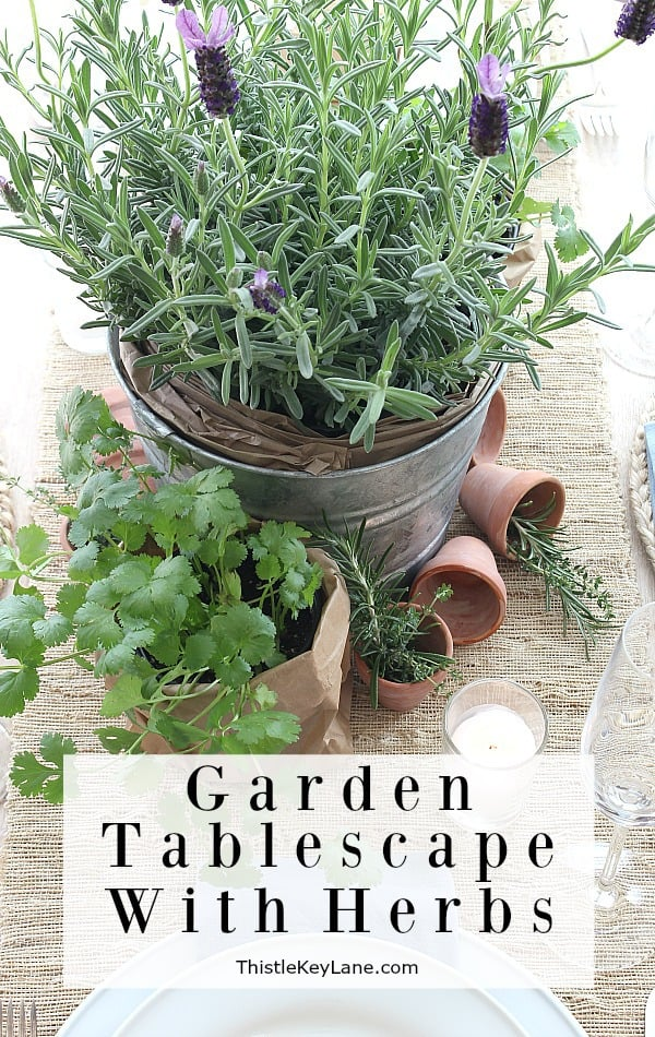 Garden Tablescape With Herbs