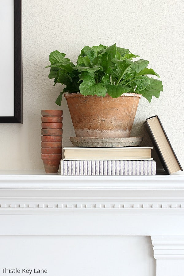 Books and terra cotta pots on a white mantel.