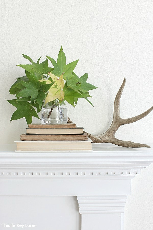 Stack of neutral colored books, vase of leaves and an antler.