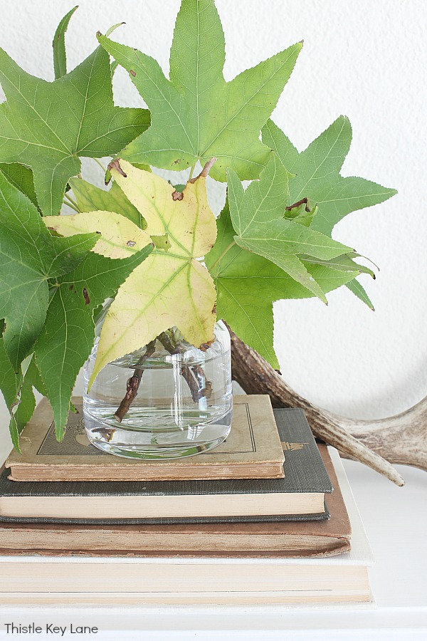 Green leaves in a vase on a stack of books.