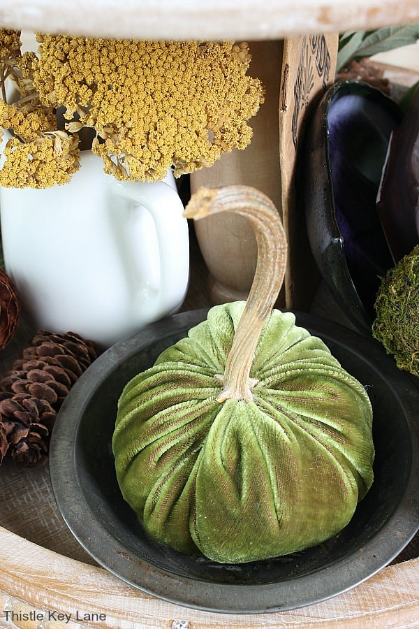 Green velvet pumpkin with a real pumpkin stem.