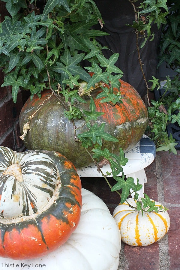 Stack of pumpkins in orange, green and white.