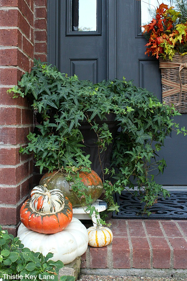 Ivy in a black urn with pumpkins at the base. Fall Decorating Ideas For A Small Porch.