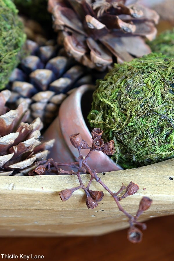 Wood bowl with pinecones, moss, eucalyptus and terra-cotta pots.