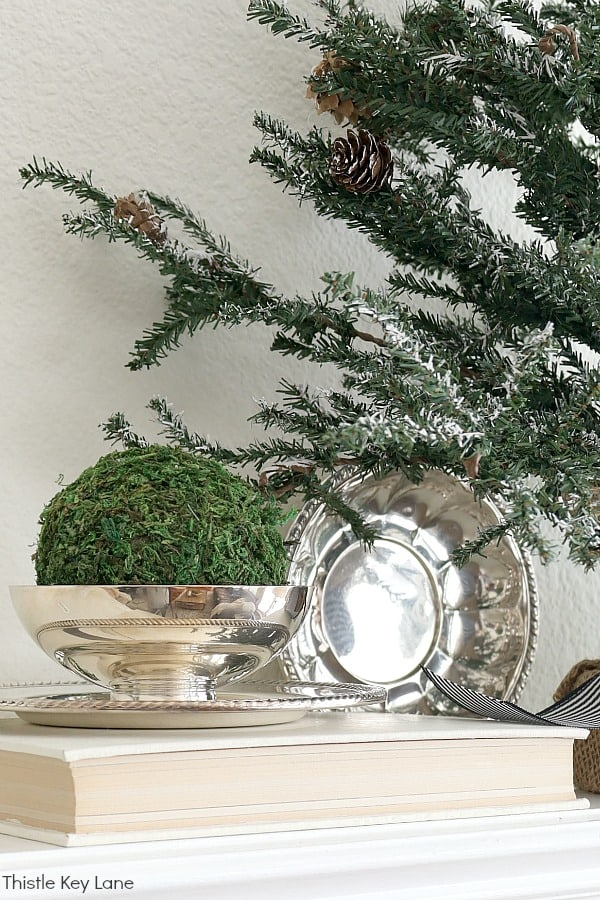 Vintage silver vignette with green moss. Transitioning From Holiday To Winter Decor - Use these simple winter decorating ideas to make your home feel warm and cozy after the holidays. Winter Decorating Ideas. Winter Decorating After Christmas. How To Make A Home Feel Cozy. Decorating With Faux Pine Trees. Decorating With Vintage Silver.