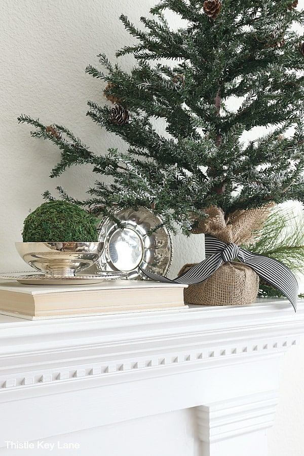Silver bowl with moss on book next to faux pine tree. Transitioning From Holiday To Winter Decor.