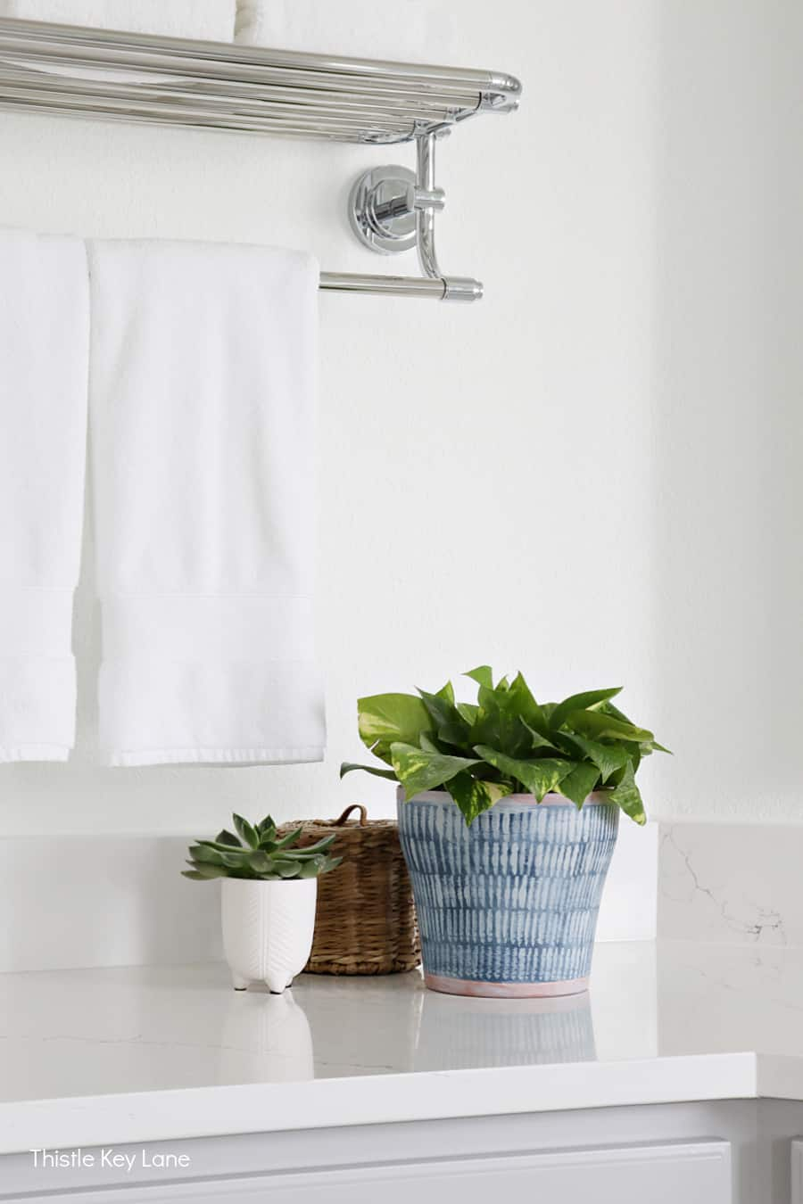 Plants in decorative containers on the bathroom counter. How To Hand Paint A Cachepot.