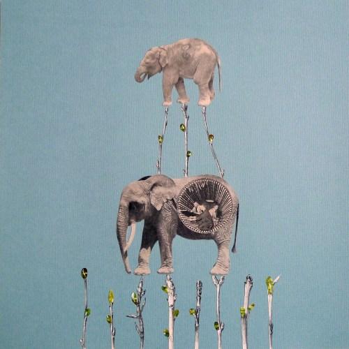 Elephants Walking on Sticks