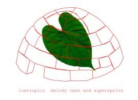 icetropic