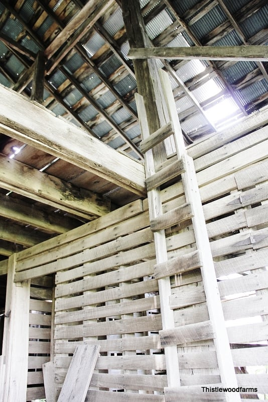 This old barn is full of extra barn wood that is destined for great DIY projects