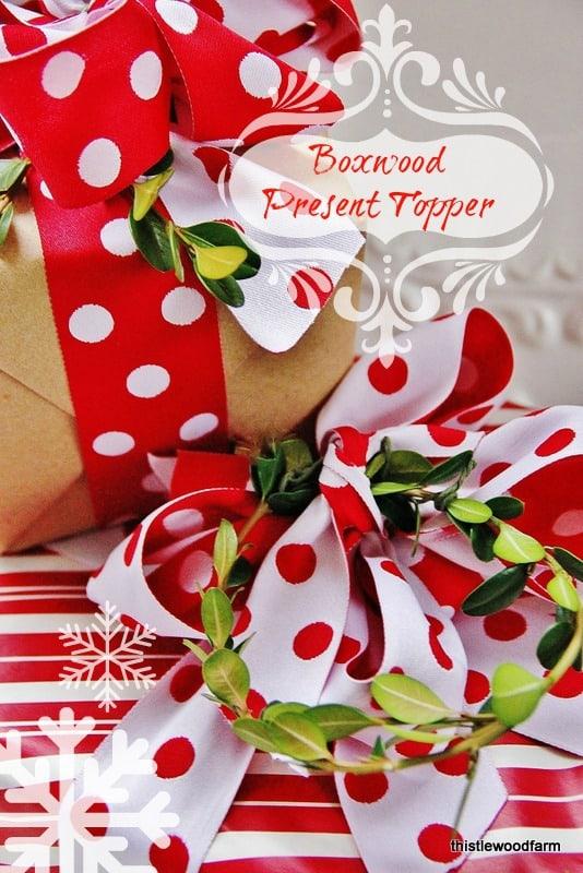 Boxwood Present Topper