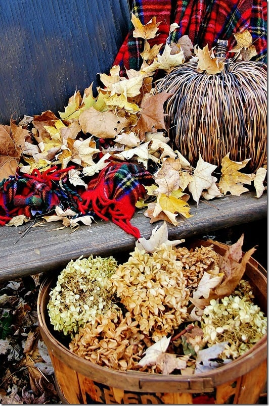 fall-decorating-farm