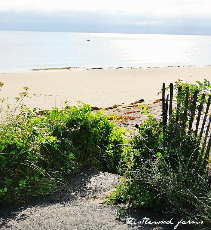 Pathway_to_beach