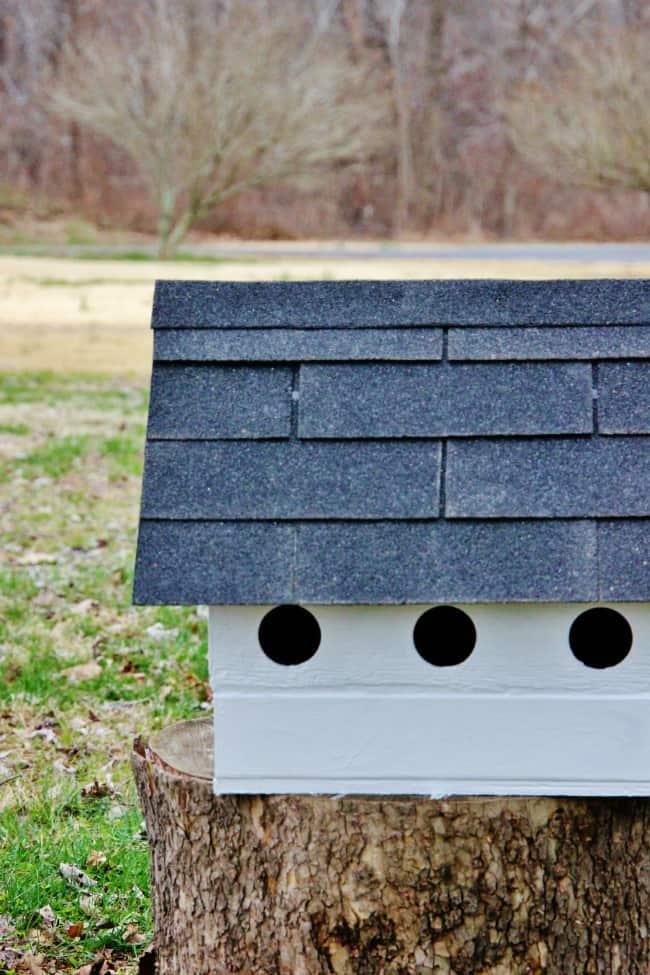 birdhouse diy project