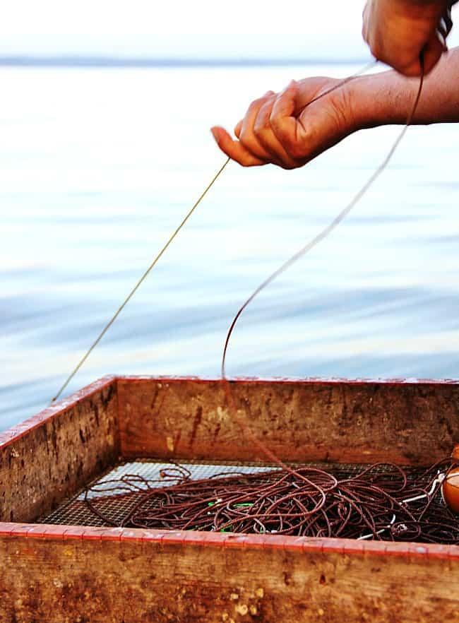 fishing line