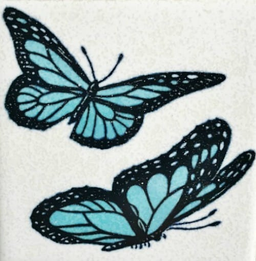 I salvaged one butterfly tile from the old bathroom- to not forget my roots.