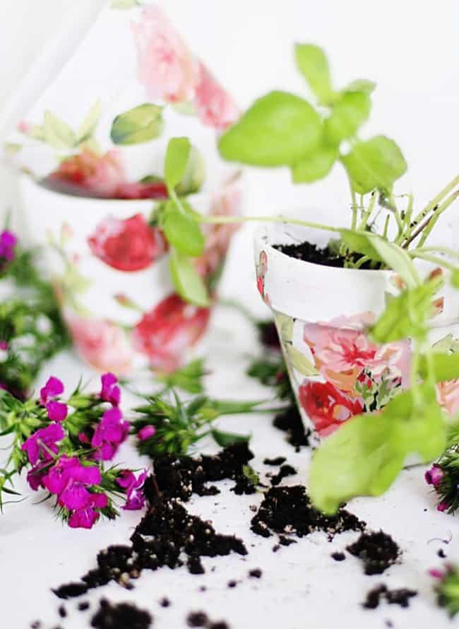 Spring Craft DIY flower pots
