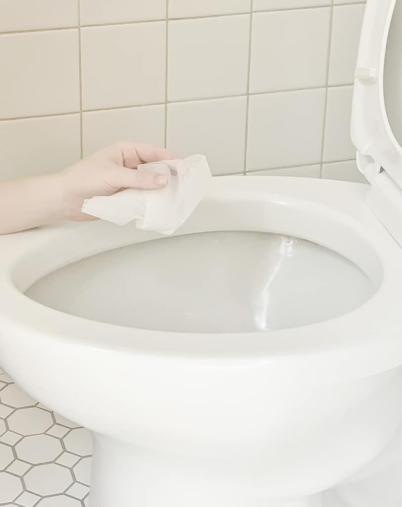 simple tips for cleaning the house toilet ring