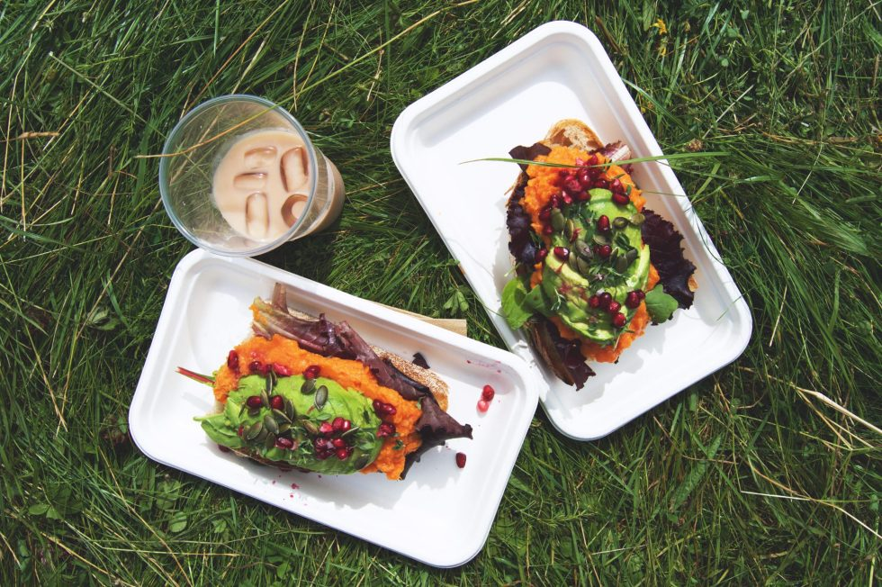 Vegan Festival Eats | Wilderness