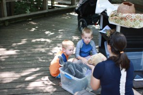 This lovely volunteer took at least 30 minutes to go through all of her zoo boxes and answer lots of questions.