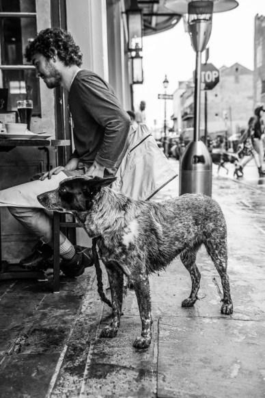 ©Cherie McKay