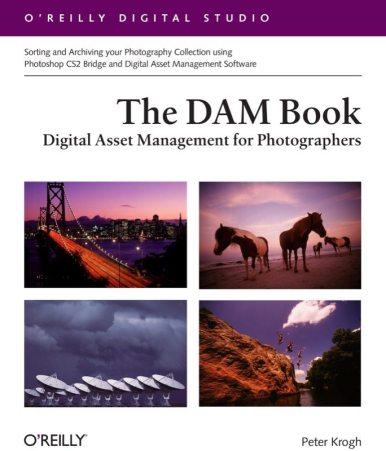 DAM_Book.indd