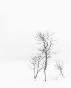 ©Marc Doudiet