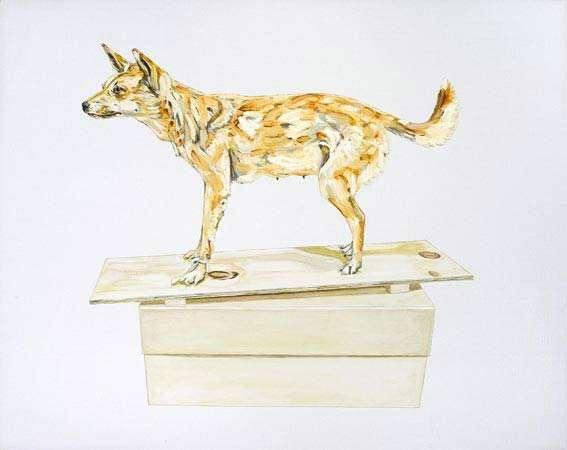 Emma Lindsay, Hunted Dingo