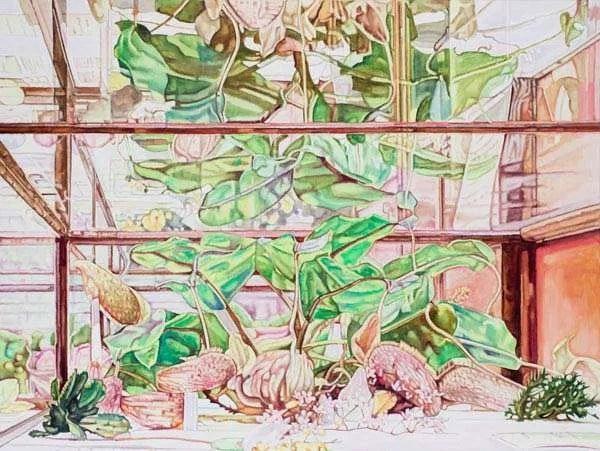 Dena Kahan, Artwork