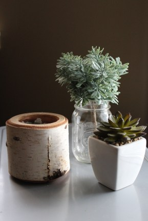 I really like incorporating natural elements into the home. Especially succulents!
