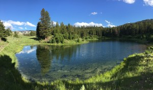 A lake on the Beaver Ponds Trail